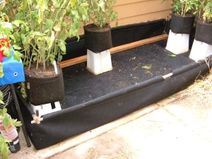 Our GeoPot  Planter Box secured with bamboo. the pvc part was discarded.